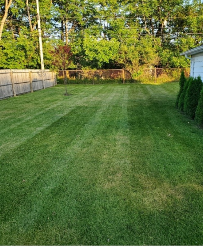 Lawn Mowing Contractor in Jacksonville, FL, 32246