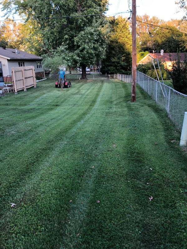 Lawn Mowing Contractor in Saint Charles, MO, 63304