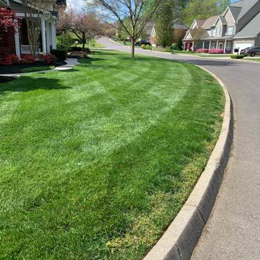 Lawn Mowing Contractor in Knoxville, TN, 37931