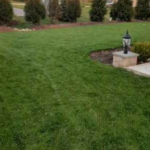 Lawn Mowing Contractor in Joliet, IL, 60431