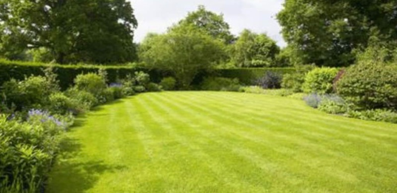 Lawn Mowing Contractor in Fort Worth, TX, 76104