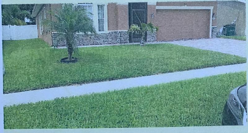 Lawn Mowing Contractor in Wesley Chapel, FL, 33545