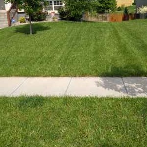 Lawn Mowing Contractor in Kansas City, MO, 64157