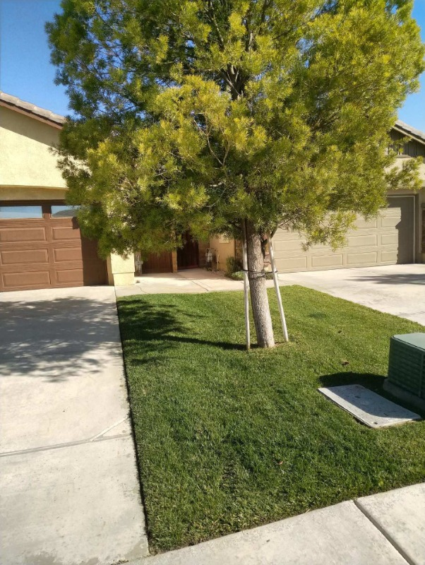 Lawn Mowing Contractor in Nuevo, CA, 92567