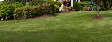 Lawn Mowing Contractor in Baltimore, MD, 21224
