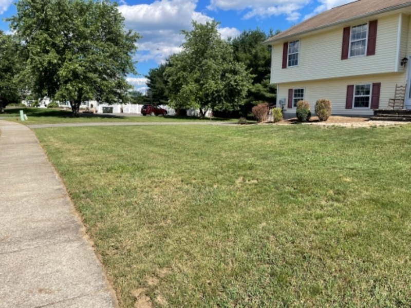 Lawn Mowing Contractor in Bloomingburg, NY, 12721