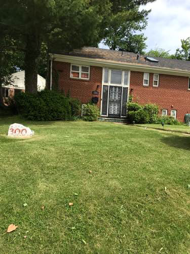 Lawn Mowing Contractor in Springdale, MD, 20774