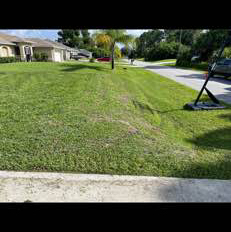 Lawn Mowing Contractor in Port Charlotte, FL, 34240