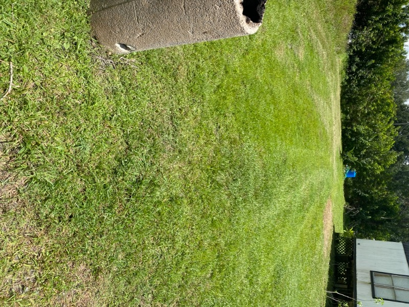 Lawn Mowing Contractor in Winter Haven, FL, 33881