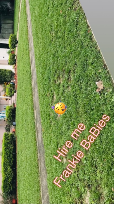 Lawn Mowing Contractor in Jacksonville, FL, 32218