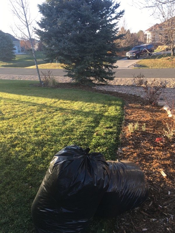 Lawn Mowing Contractor in Evans, CO, 80620