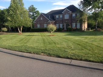 Order Lawn Care in Nashville, TN, 37221