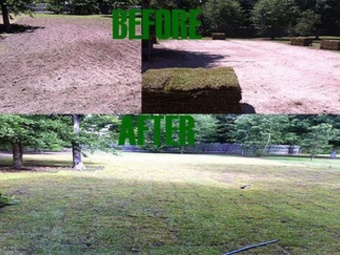 Order Lawn Care in Covington, LA, 70435
