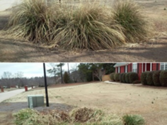 Order Lawn Care in Mcdonough , GA, 30252