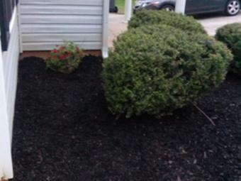 Order Lawn Care in Stockbridge, GA, 30281