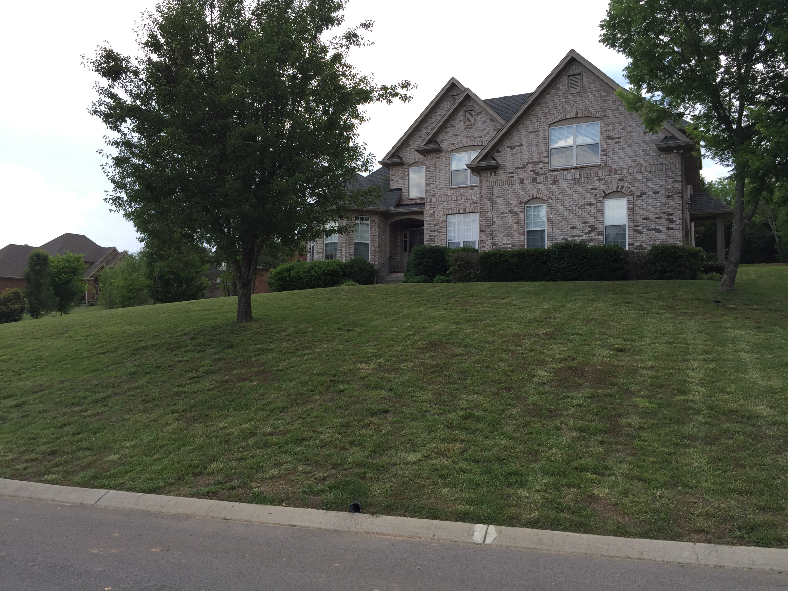 Order Lawn Care in Fairview, TN, 37062