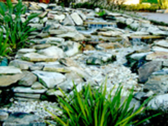 Order Lawn Care in Tarpon Springs, FL, 34688