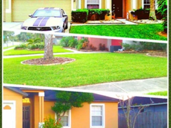 Order Lawn Care in Apopka , FL, 32704