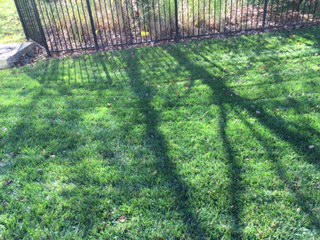 Order Lawn Care in Chesterfield, MO, 63017