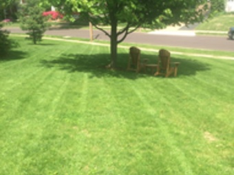 Order Lawn Care in St. Louis, MO, 63109