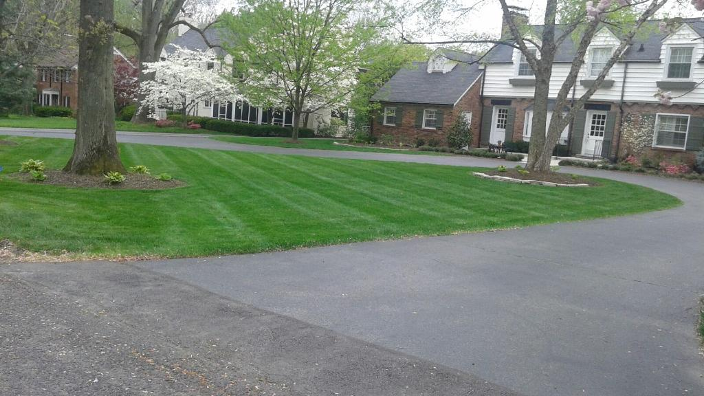 Order Lawn Care in St. Louis , MO, 63116