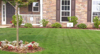Order Lawn Care in Eureka, MO, 63025