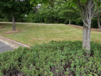 Order Lawn Care in Cartersville, GA, 30120