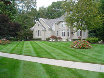 Order Lawn Care in St. Louis, MO, 63105