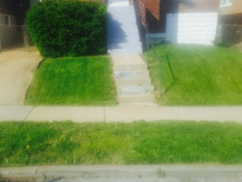Order Lawn Care in St Louis, MO, 63121