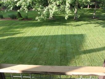 Order Lawn Care in Smyrna , TN, 37167