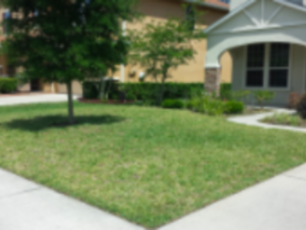 Order Lawn Care in St Johns, FL, 32259