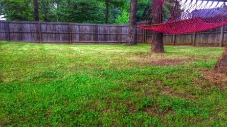 Order Lawn Care in Nashville, TN, 37206