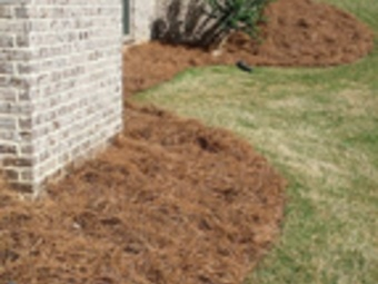 Order Lawn Care in Stockbridge, GA, 30281