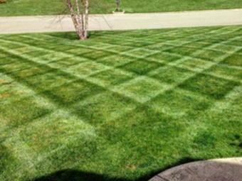 Order Lawn Care in St. Charles, MO, 63304
