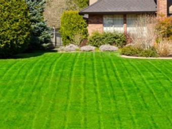 Order Lawn Care in Atlanta, GA, 30307
