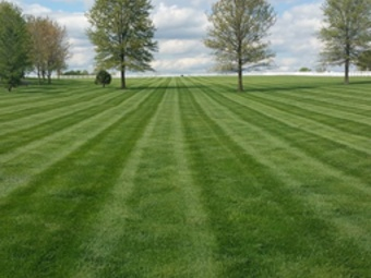 Order Lawn Care in Chaplin, CT, 06235