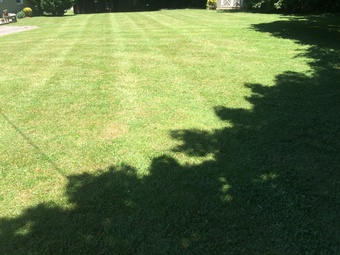 Order Lawn Care in Nashville, TN, 37207