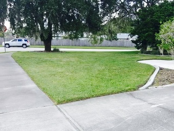 Order Lawn Care in Lutz, FL, 33559