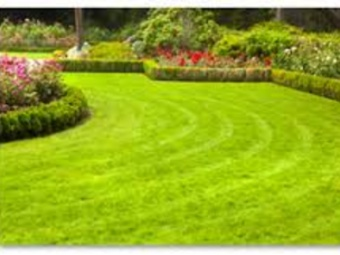 Order Lawn Care in St Louis , MO, 63128
