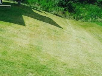 Order Lawn Care in Douglasville, GA, 30134