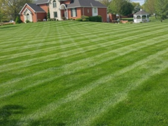 Order Lawn Care in Nashville, TN, 37214