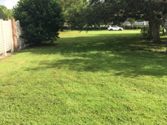Order Lawn Care in Riverview , FL, 33569