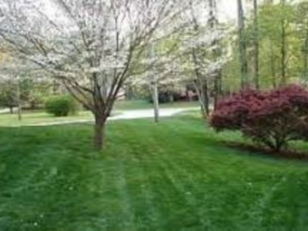 Order Lawn Care in Atlanta, GA, 30354