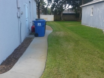 Order Lawn Care in St.Petersburg, FL, 33712