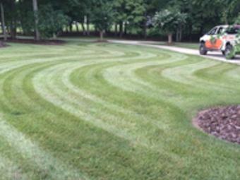 Order Lawn Care in Sophia, NC, 27350