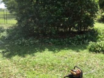 Order Lawn Care in Orlando, FL, 32808