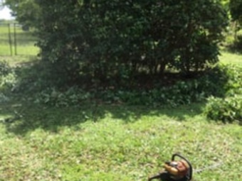 Order Lawn Care in Orlando, FL, 32808