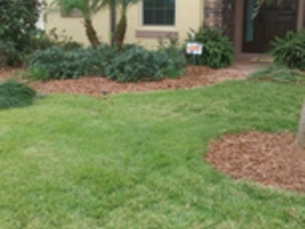 Order Lawn Care in Clermont, FL, 34714