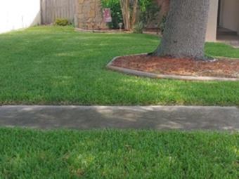 Order Lawn Care in Largo, FL, 33773
