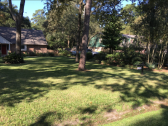 Order Lawn Care in Houston, TX, 77065